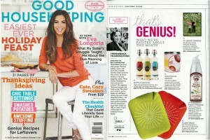 Good Housekeeping- sinkstation